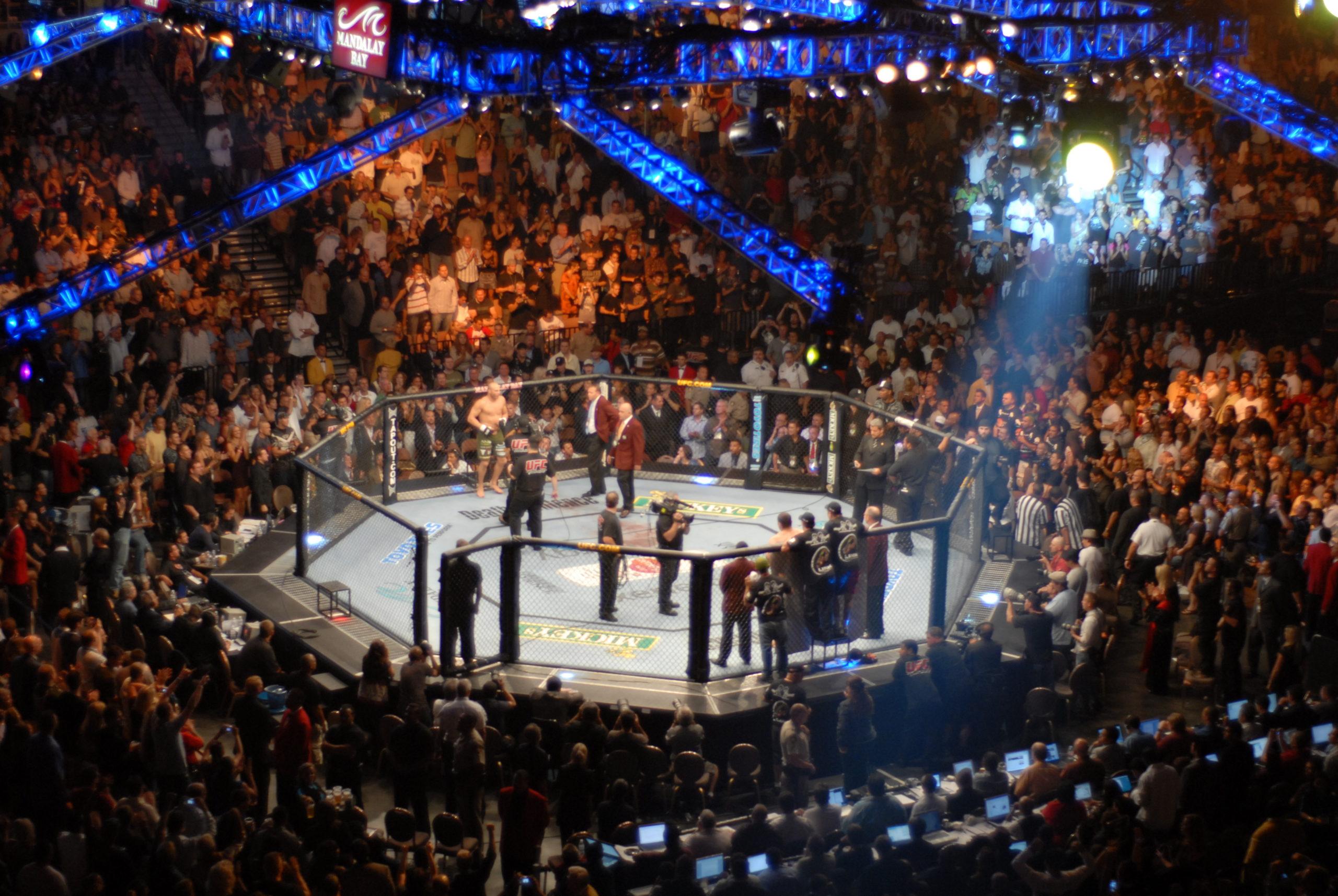SportsTips' UFC Best Bets For UFC 255