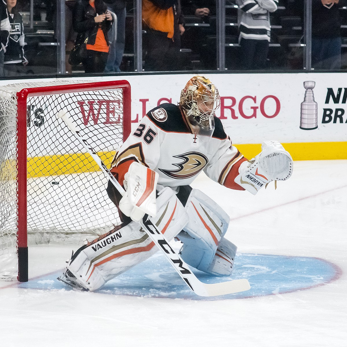 NHL Predictions on Where the Anaheim Ducks Will Finish the 2021 Season