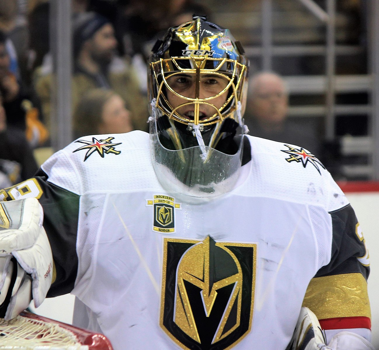 NHL Predictions on Where the Vegas Golden Knights Will Finish the 2021 Season