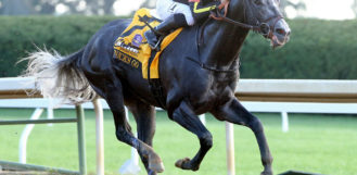 Pegasus World Cup Invitational Stakes Odds: Top 3 Contenders