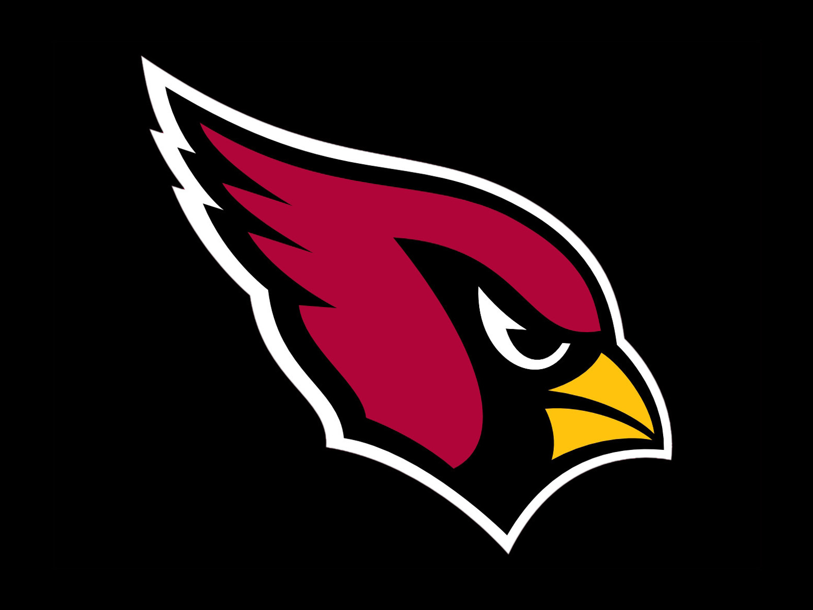 NFL Betting Review on the Arizona Cardinals for the 2020 Season